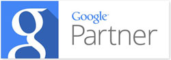 Google Partner | WSI Marketing Digital