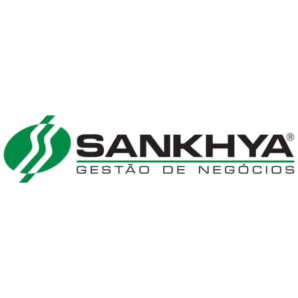 Sankhya Gestão de Negócios | WSI Marketing Digital