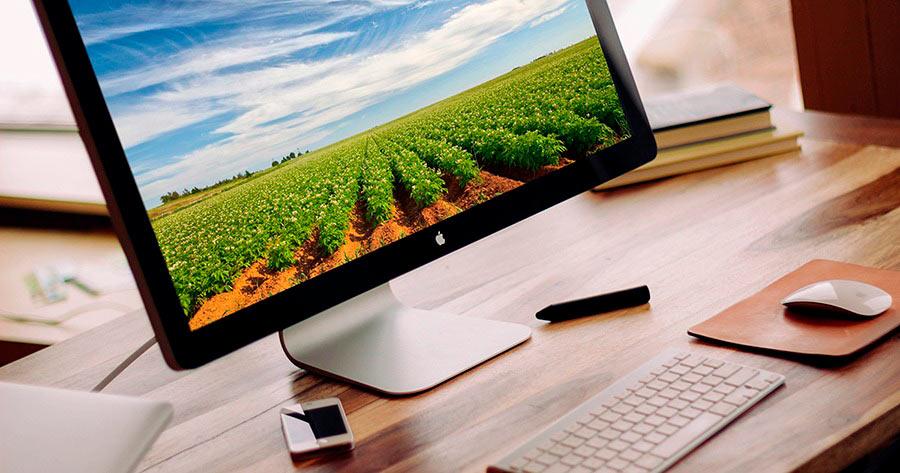 Marketing digital para o agronegocio Site, Search e Social
